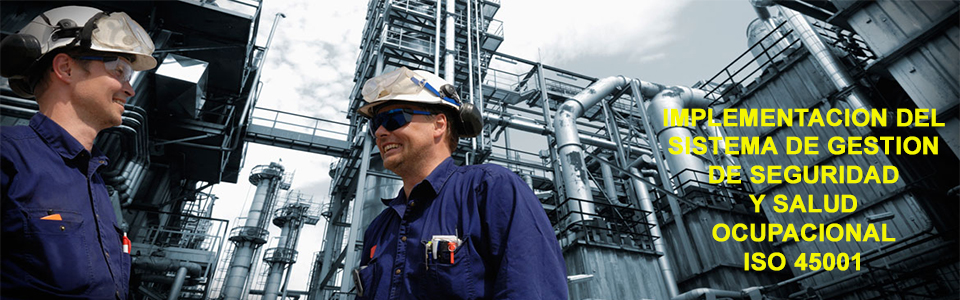 Líder en Prevención de Riesgos Laborales y Ambientales
